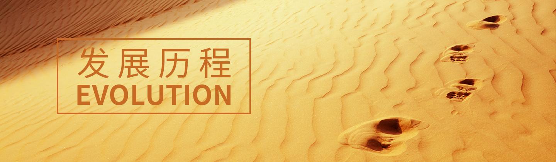 雷诺表RARONE品牌发展历程-雷诺表RARONE官方网站