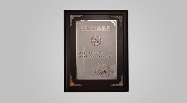 2009年1月深圳知名品牌